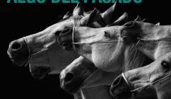 ESPAÑA: ÚLTIMA CONVOCATORIA DE LA TEMPORADA CONTRA LOS CIRCOS CON ANIMALES